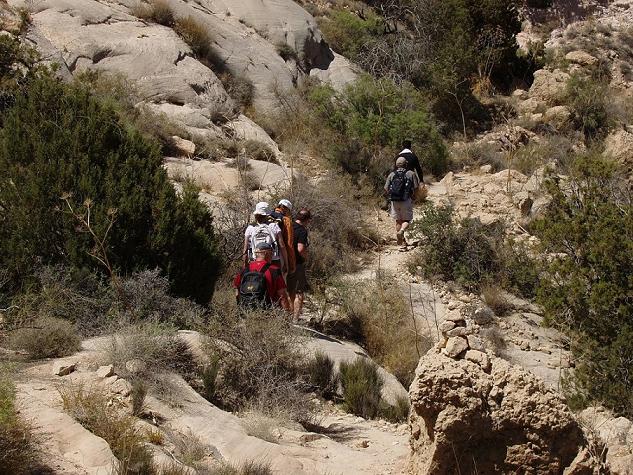 Trekking Dana Nature Reserve